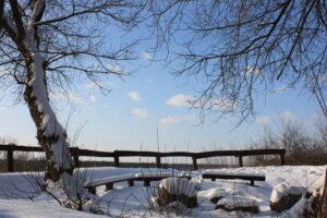 """Wyróżnienie Maria Bilant (tytuł: """"Winter Wonderland"""", miejsce wykonania: Strońsko)"""